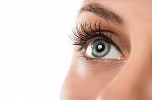 Lash tinting and brow tinting in Philadelphia